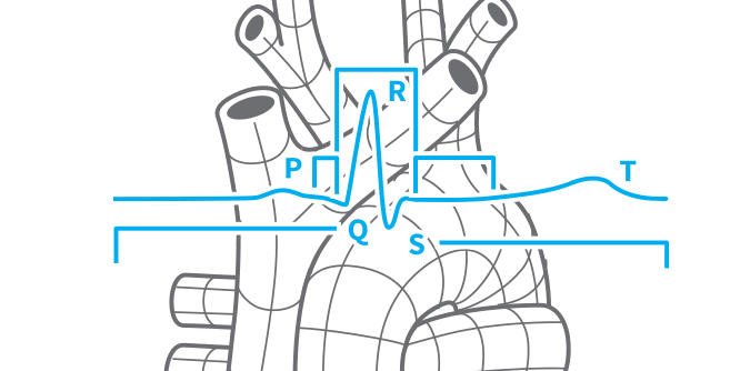 Card Cardiovascular on Respiratory Flow Sensors