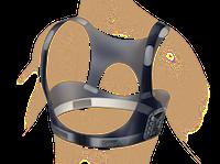 Equivital Sensor Belt