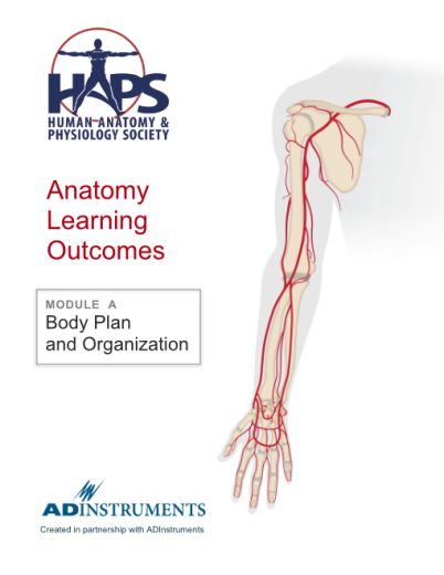 Resources For Educators The Haps Anatomy Learning Outcomes
