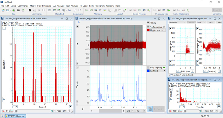Mouse Hippocampal bursts sampled with a TBSI Transmitter, and analyzed using Spike Histogram