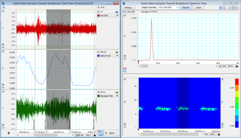 An EEG recording from a human being exposed to light stimuli. Alpha wave activity has been isolated using 2 different methods: 1) LabChart Spectrum and 2) Bandpass Filter.